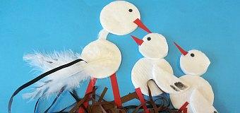 Ptaki ozdobą przyrody