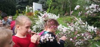 Zajęcia w ogrodzie szkolnym