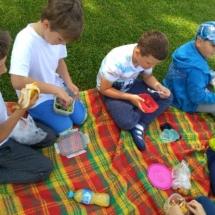 piknik-owocowy-08