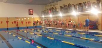 Mikołajkowe Mistrzostwa Pływackie