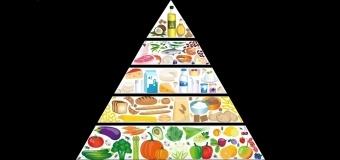 Konkurs wiedzy o zdrowym stylu życia