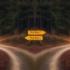 Rozwidlenie dróg w lesie