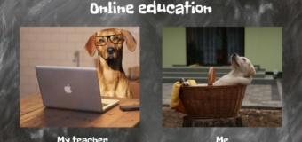 Nauczanie na wesoło, czyli Konkurs na mem o tematyce szkolnej