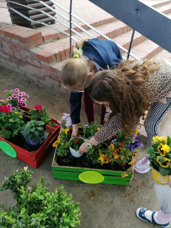 Klasa 2f-Julia i Laura sadzą kwiaty
